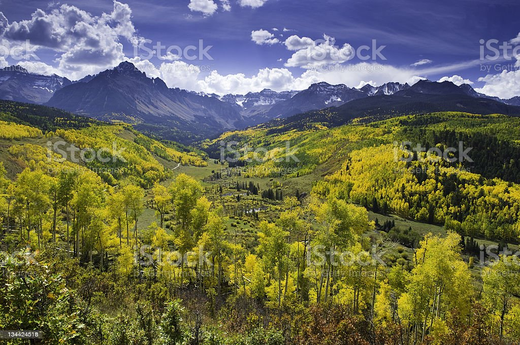 Aspens and Mt. Sneffels Mountain Scenic View with Fall Colors stock photo