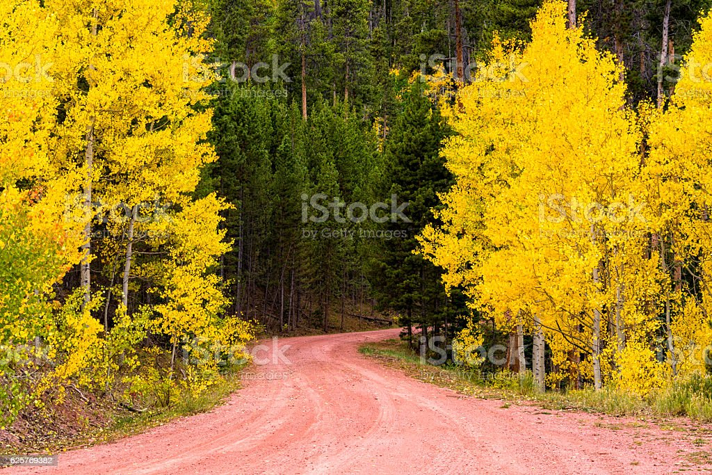 Aspens and Red Dirt Road stock photo