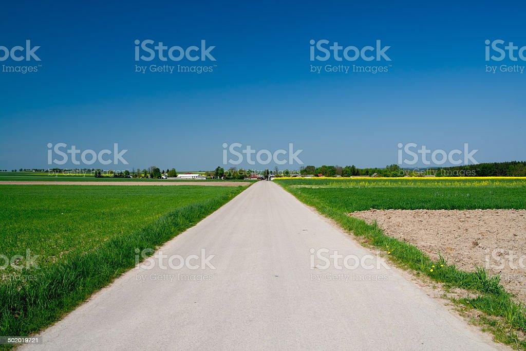 Asphalt countryside road royalty-free stock photo