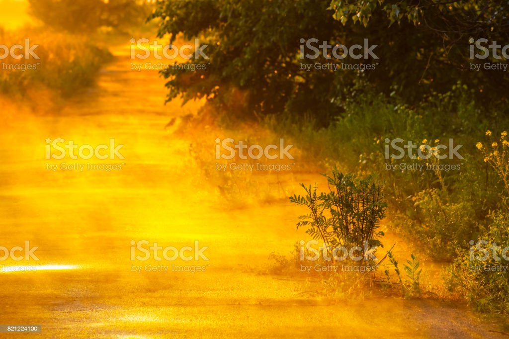 asphalt road after a rain at the evening stock photo