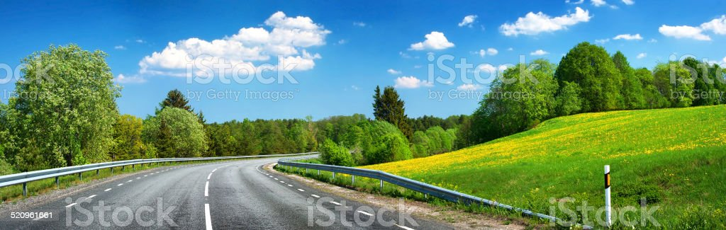 Asphalt road and dandelion field stock photo