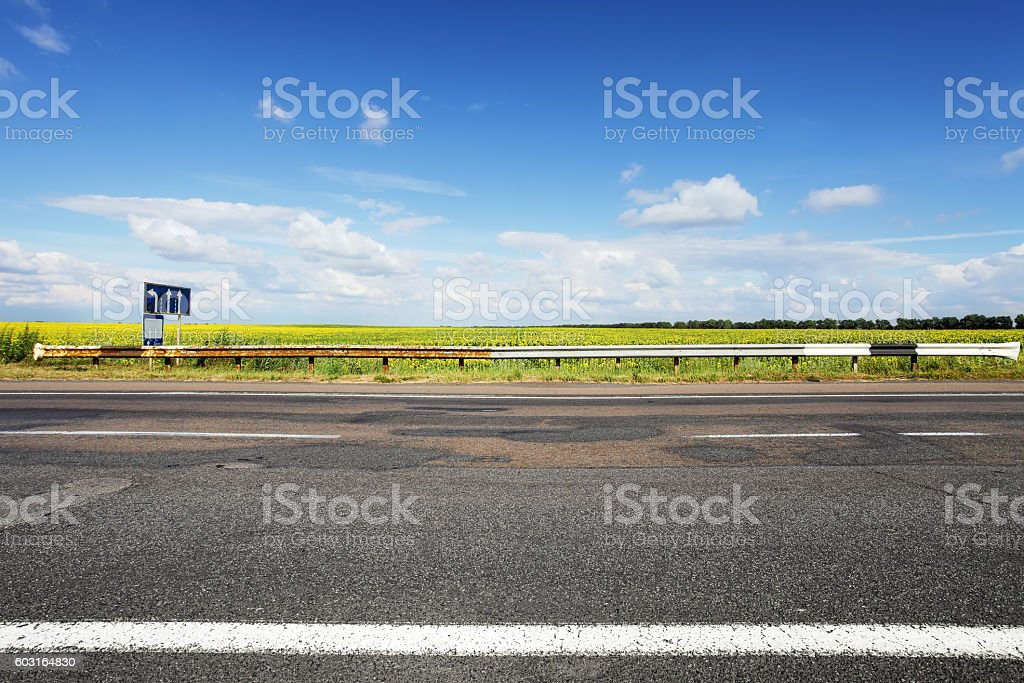 Asphalt road. Field of sun flowers on horizon stock photo
