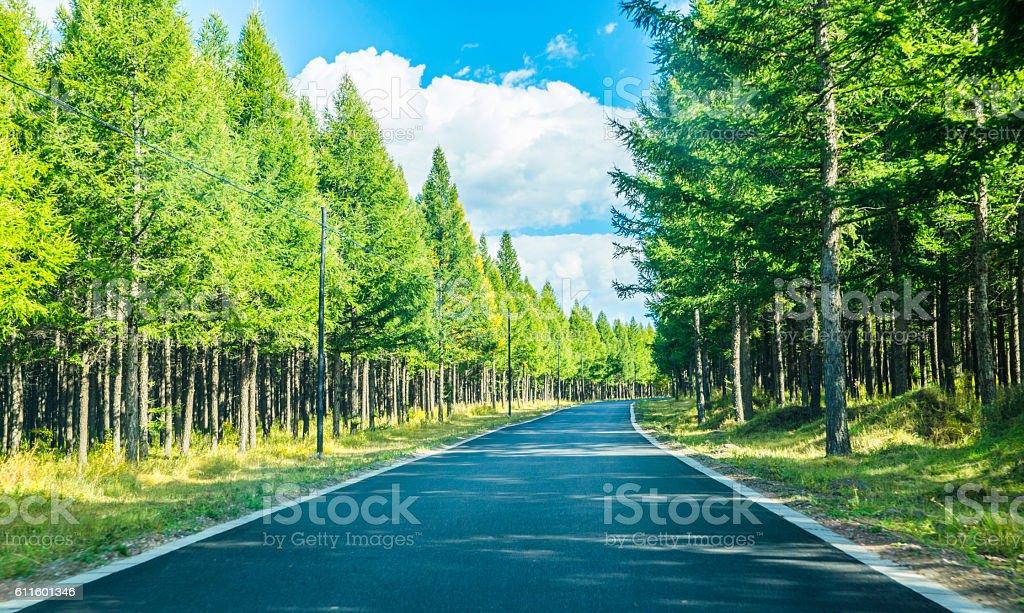 Asphalt road forward direction stock photo