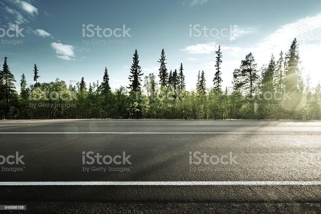 asphalt road in forest stock photo