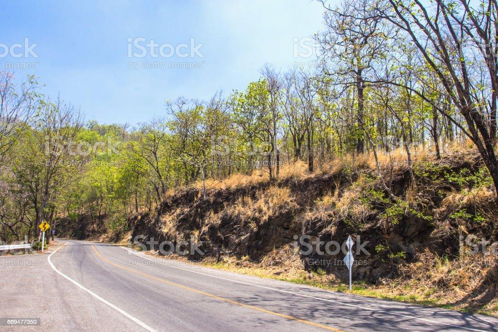 Asphalt road in rural autumn landscape, Thailand stock photo