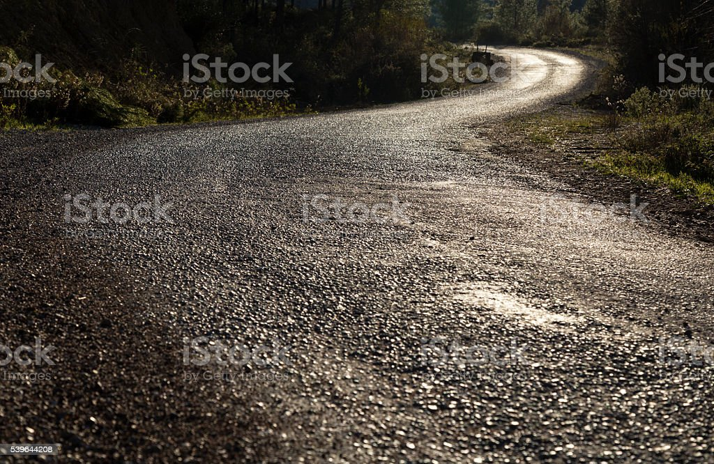 Asphalt Road Through Forest stock photo