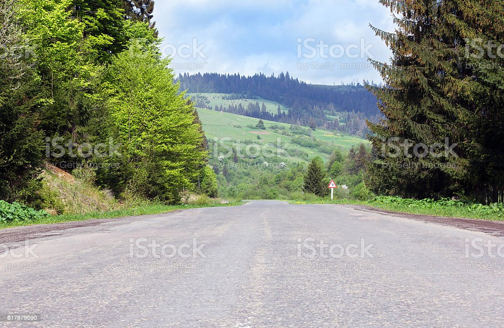 asphalt road through mountains with fir-trees stock photo