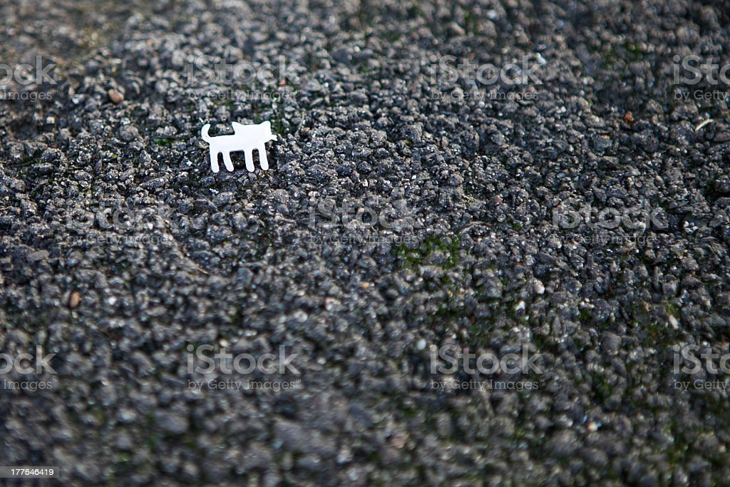 Asphalt with a tiny white cat royalty-free stock photo