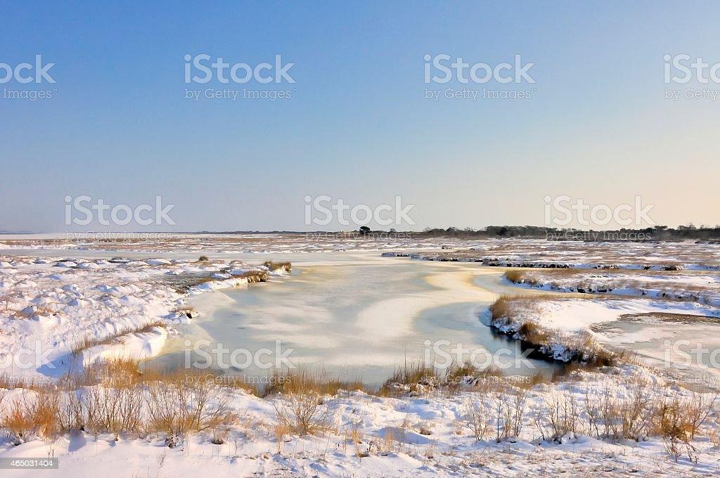 Assateague Island Sinepuxent Bay In Snow stock photo
