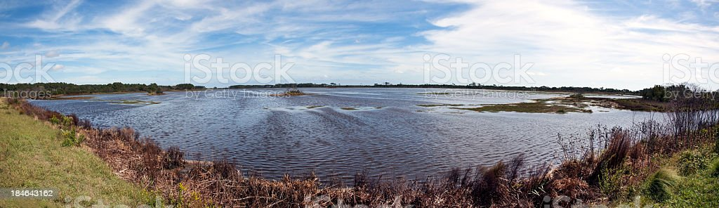 Assateague Wetland Panorama royalty-free stock photo