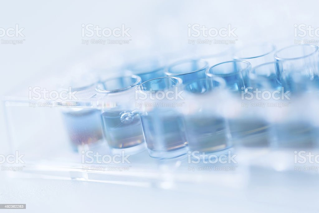 Assay plate 96 well with blue buffer stock photo