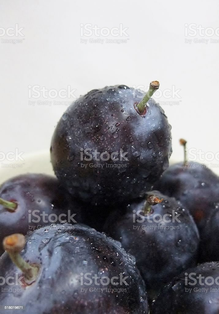 Assemblage of Fresh Plums stock photo