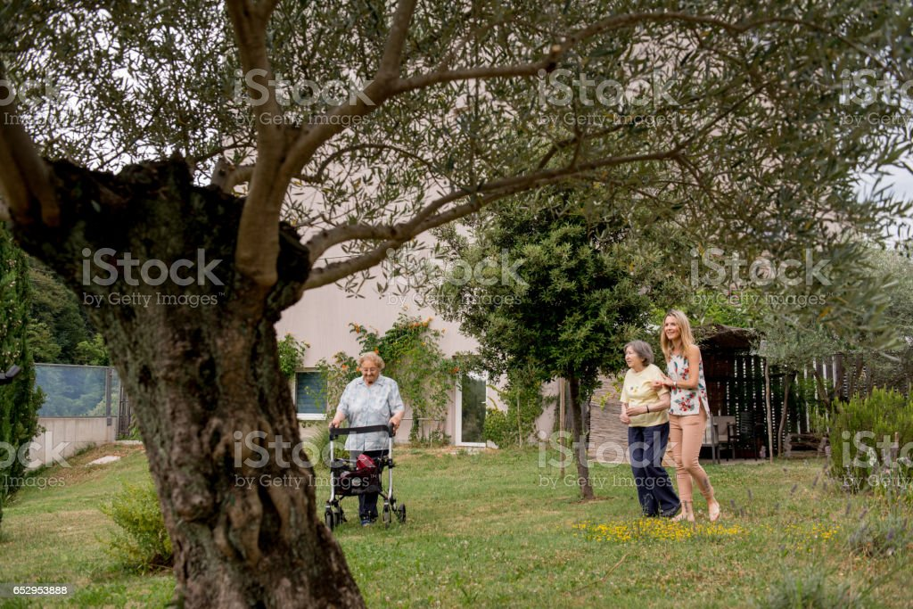Assistant In The Nursery Home Have A Walk With Senior Woman In The Garden stock photo