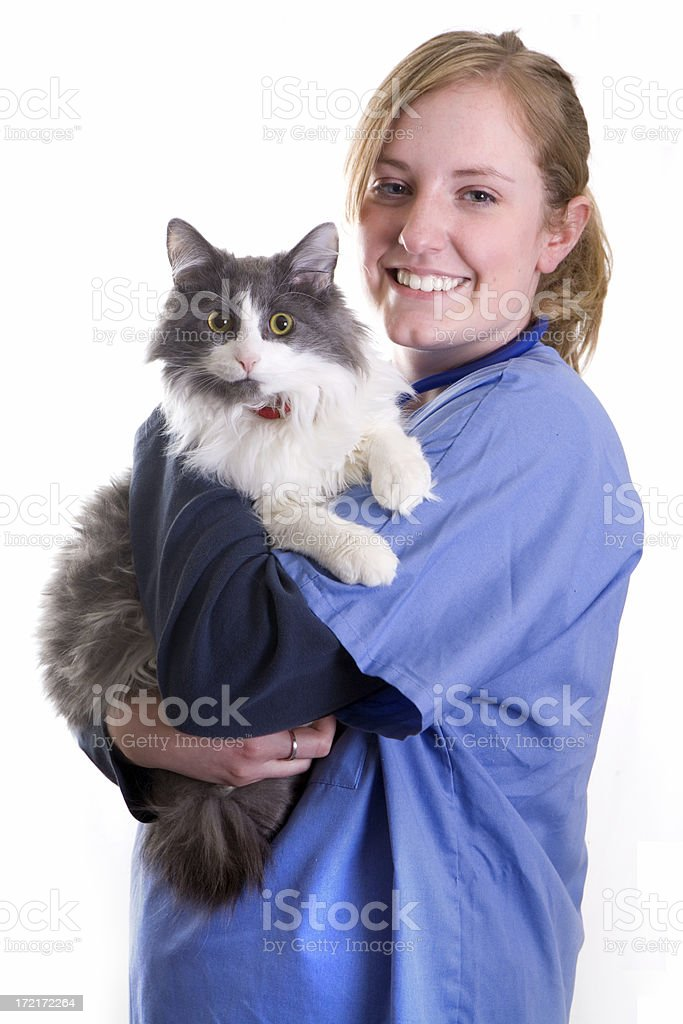 Assistant Veterinarian royalty-free stock photo