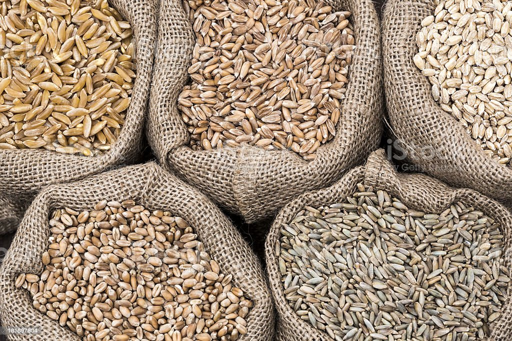 Assorted cereal grain stock photo