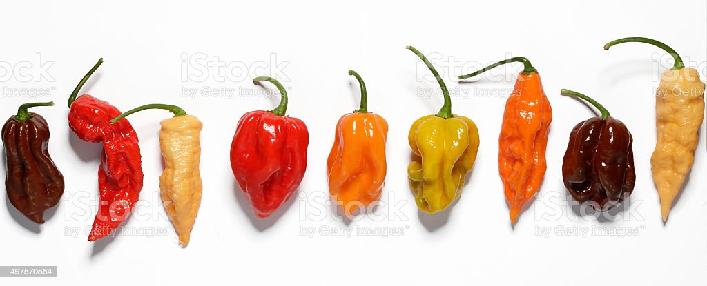 Assorted fresh organic peppers stock photo