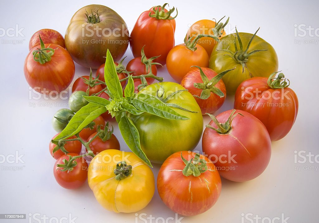 Assorted Heirloom Tomatoes Vegetables Background, Organic Homegrown Produce stock photo