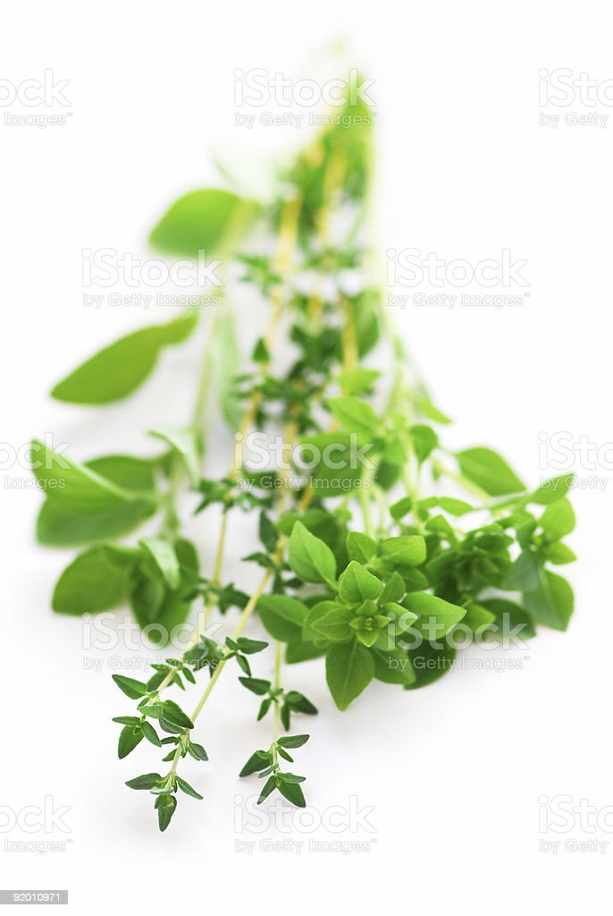 Assorted herbs stock photo