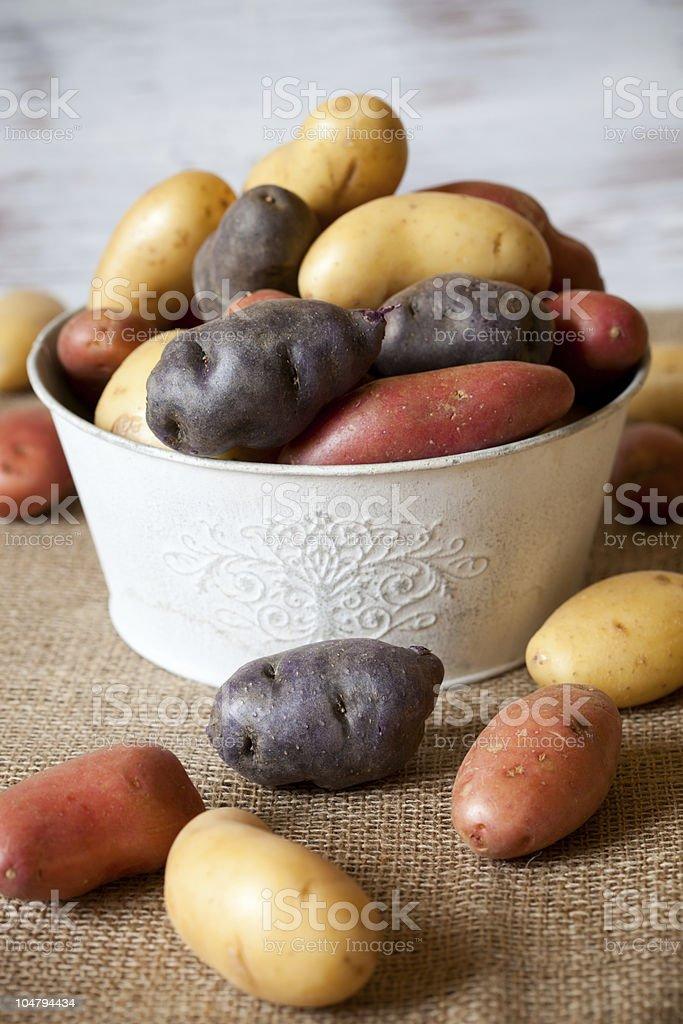 Assorted new potatoes stock photo