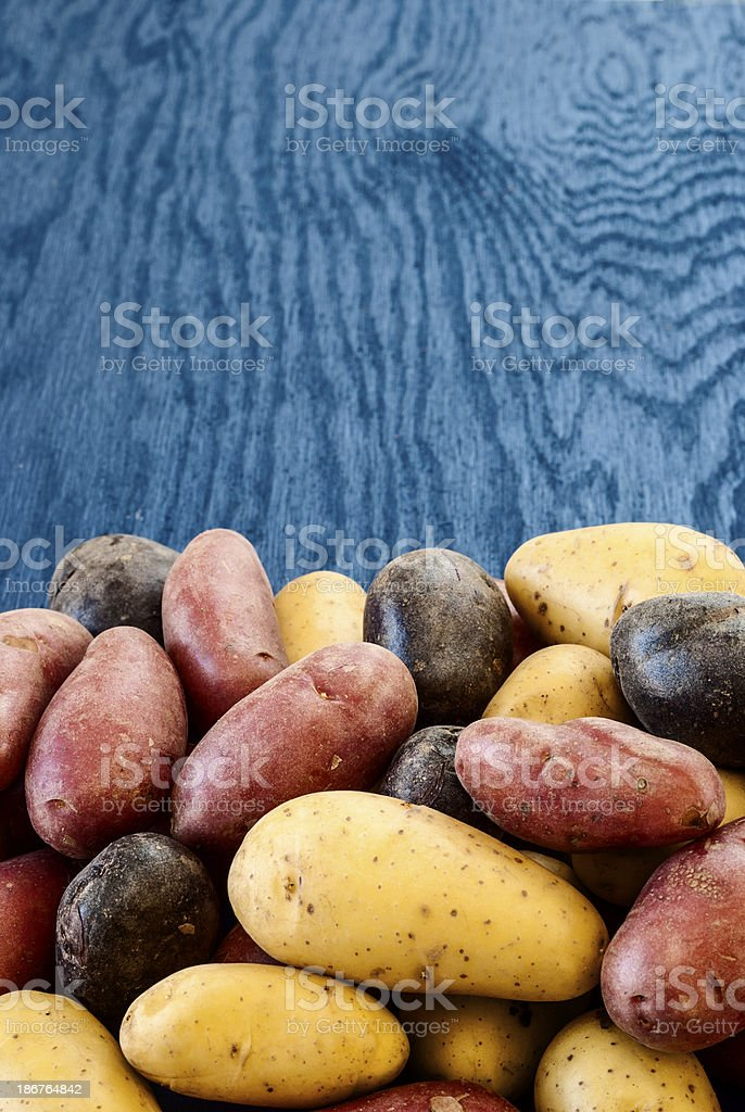 Assorted Peruvian potatoes stock photo