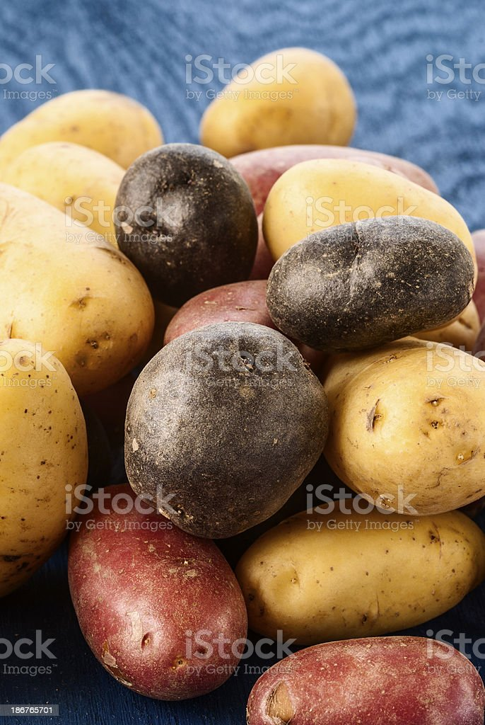 Assorted Peruvian potatoes stock photo
