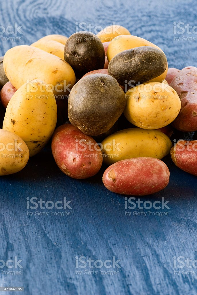 Assorted potatoes royalty-free stock photo