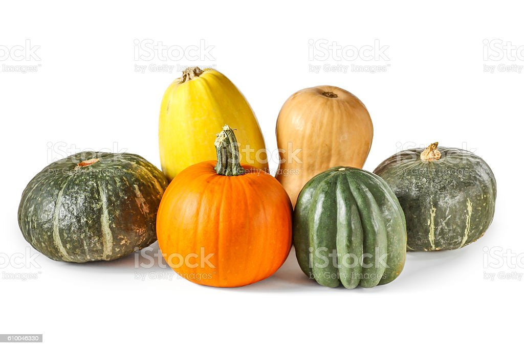 Assorted pumpkin and squash isolated on white stock photo