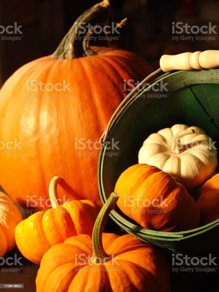 Assorted pumpkins III royalty-free stock photo