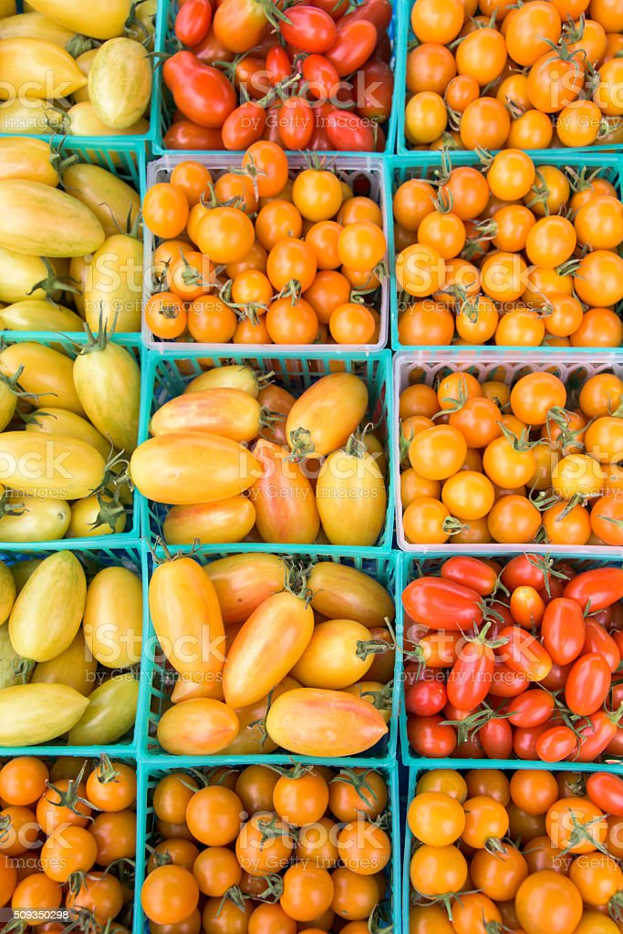 Assorted Tomatoes stock photo
