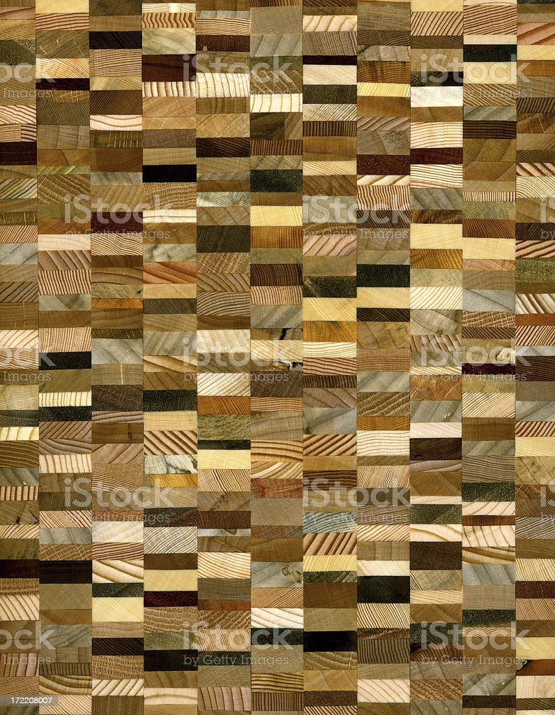 Assorted Wood Textures (12 Different Species) royalty-free stock photo