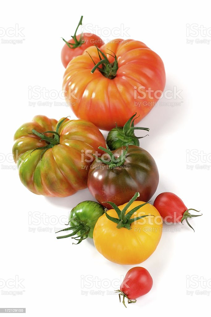 Assortment of different types of tomatoes on white back stock photo