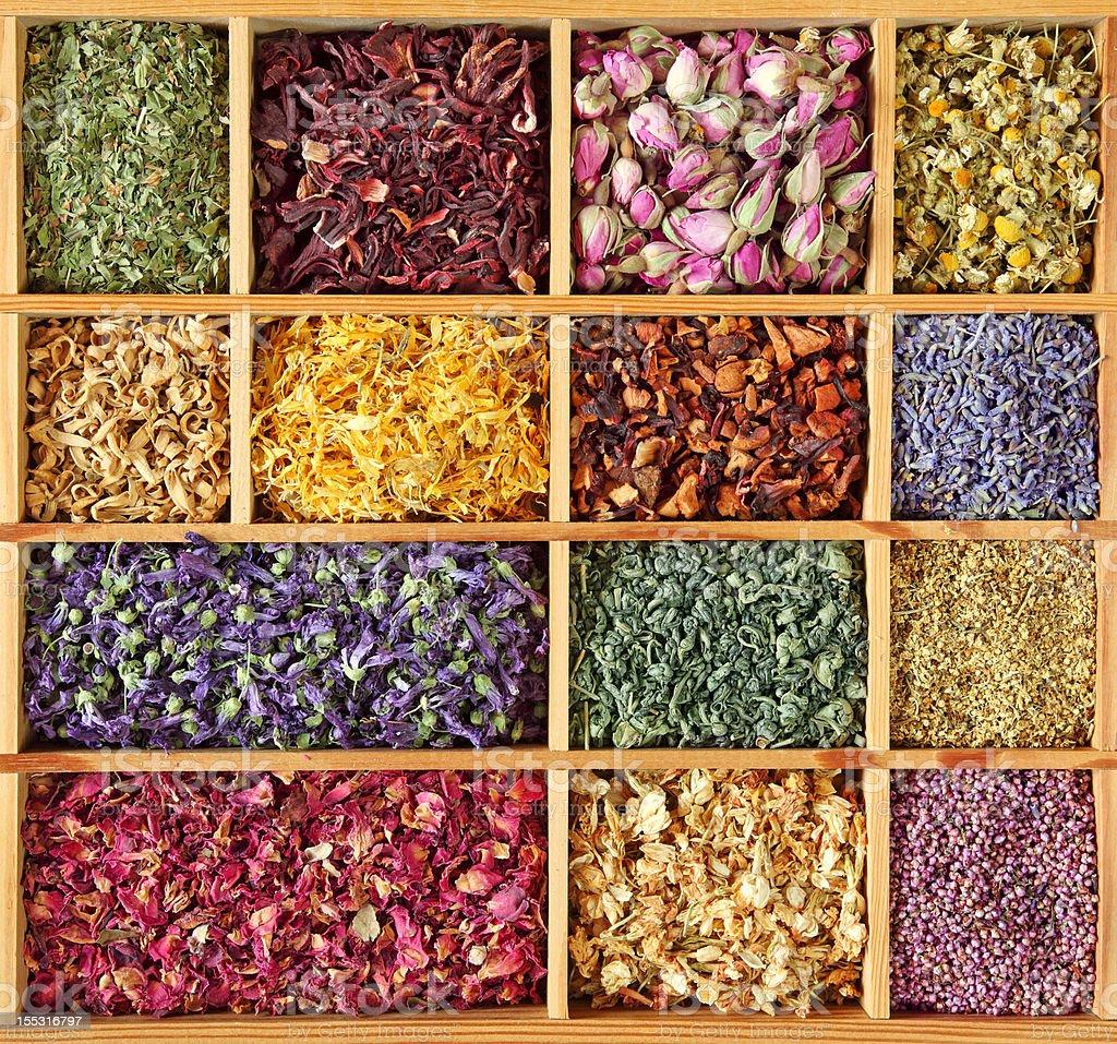 Assortment of dried tea stock photo