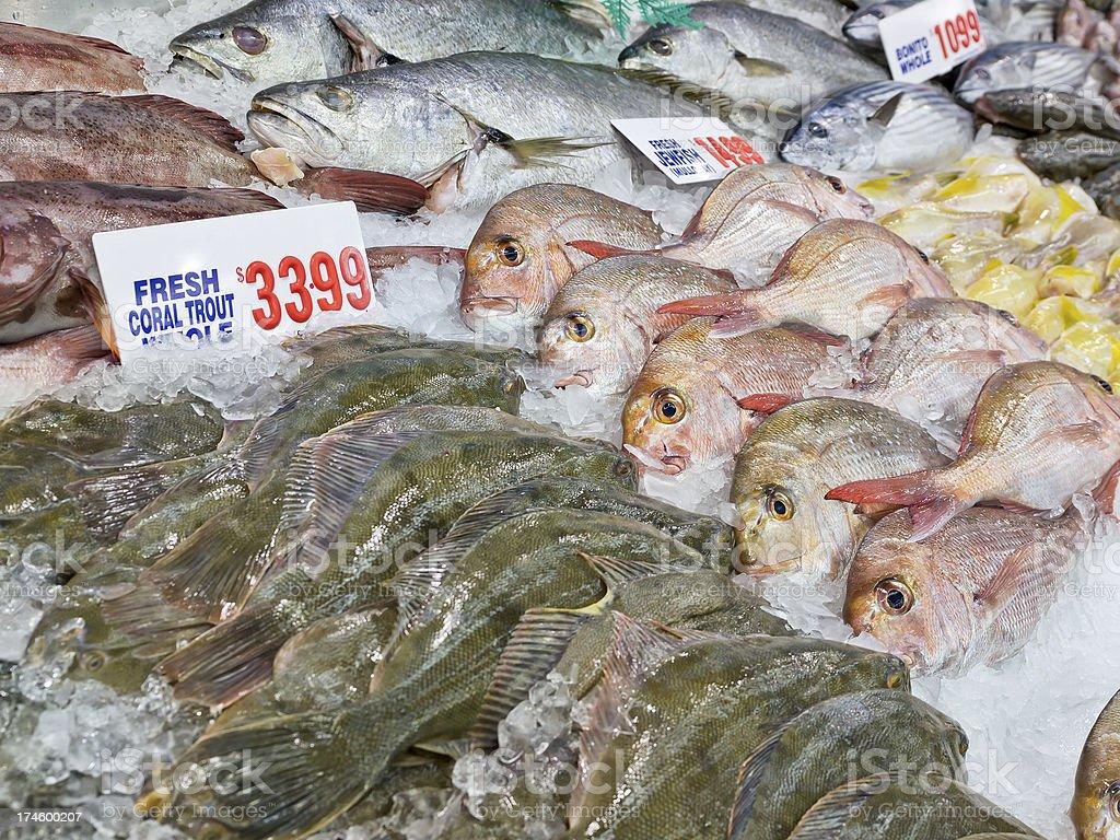 Assortment of Fresh Fish stock photo