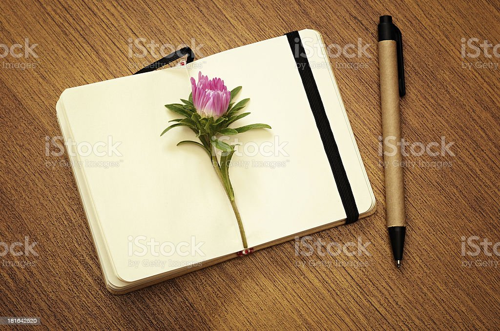 Aster bud on a notebook royalty-free stock photo