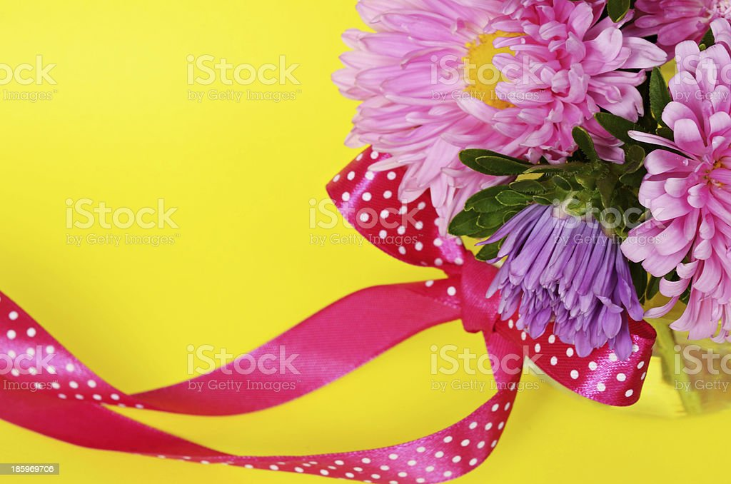 Asters and bow stock photo