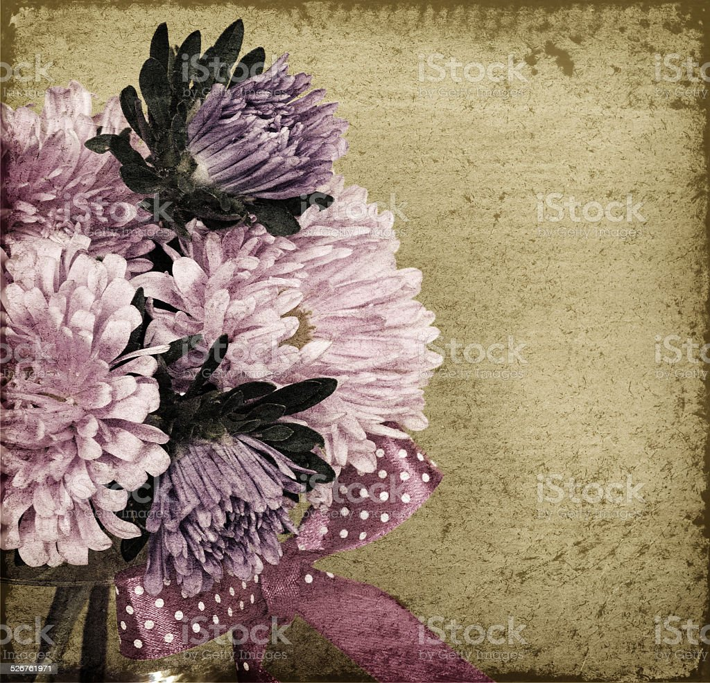 Asters on old background stock photo
