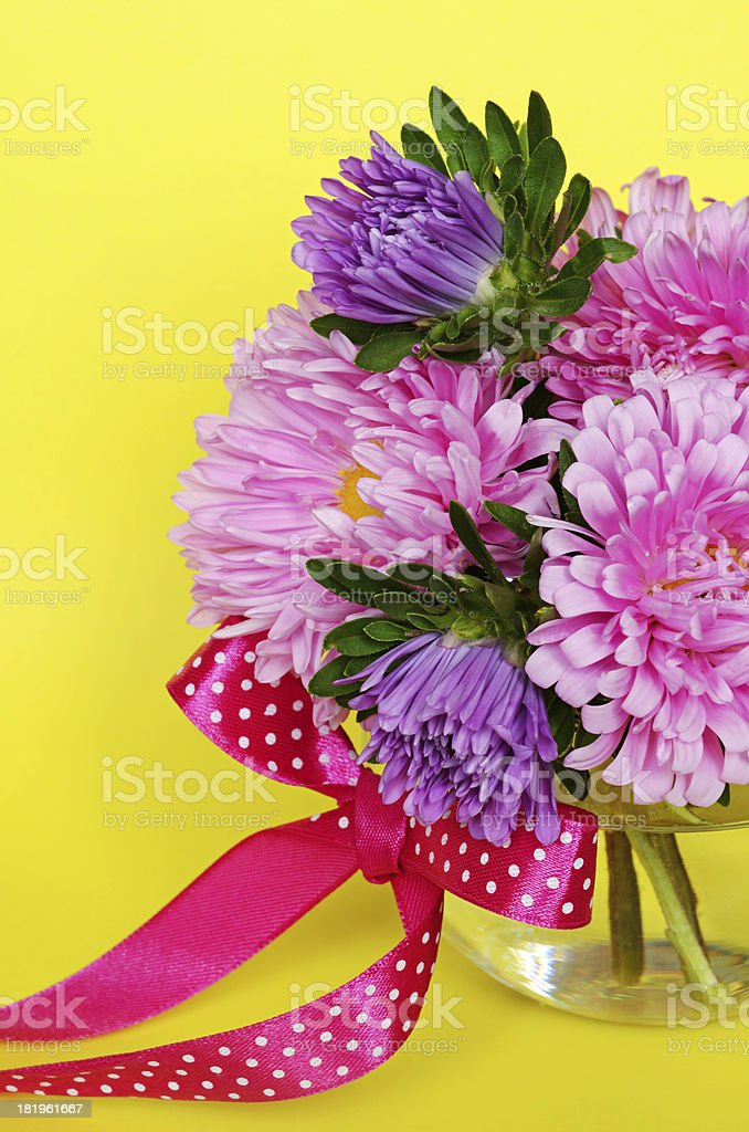 Asters on yellow background stock photo
