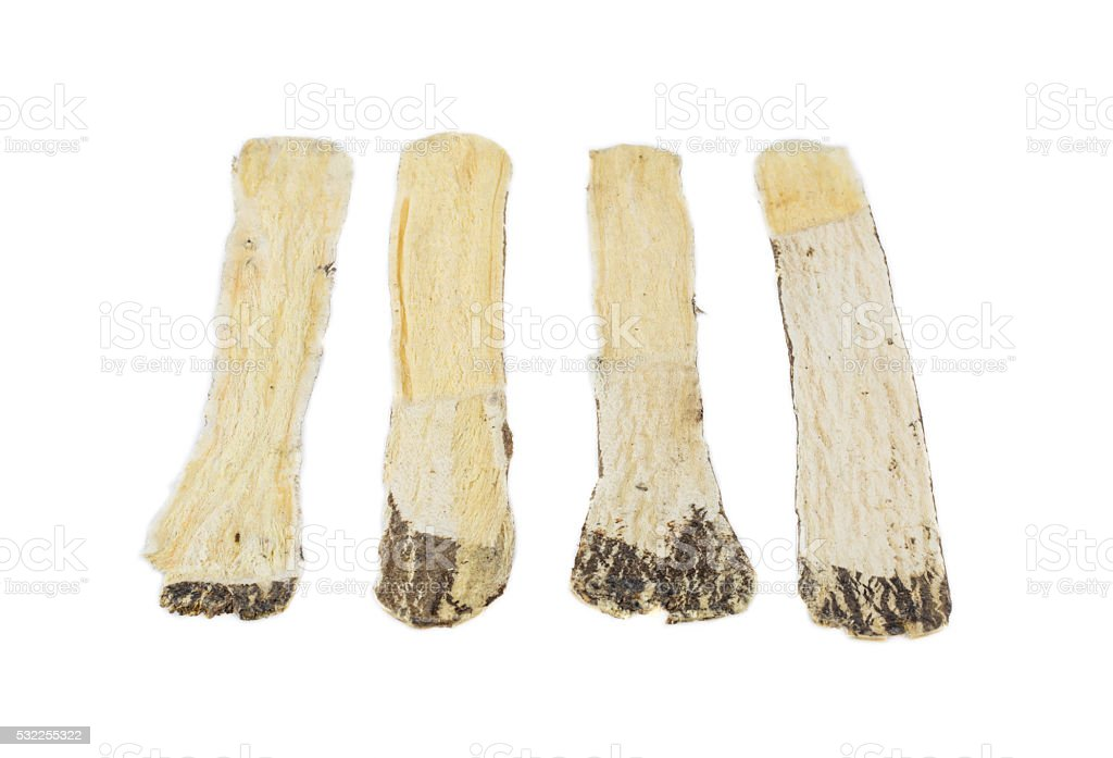 Astragalus root slices, Huang Qi or Bei Qi-Chinese Herbal medicine stock photo