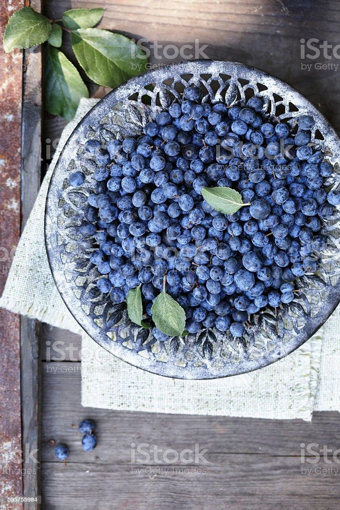 Astringent healing fruit Prunus stock photo