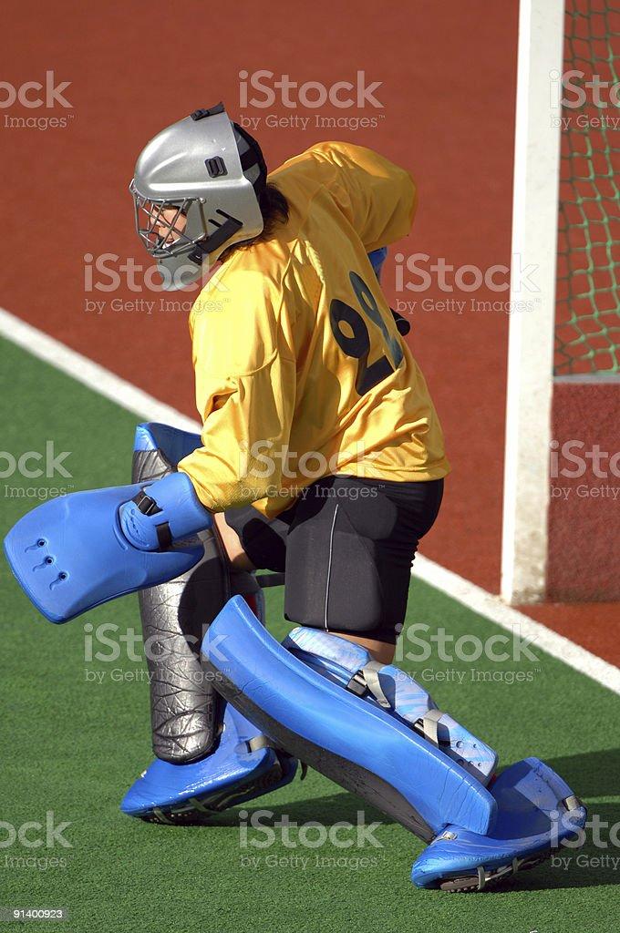 Astro hockey 02 royalty-free stock photo