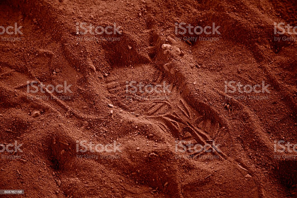 Astronaut footprint man on mars shoe print desert small step stock photo