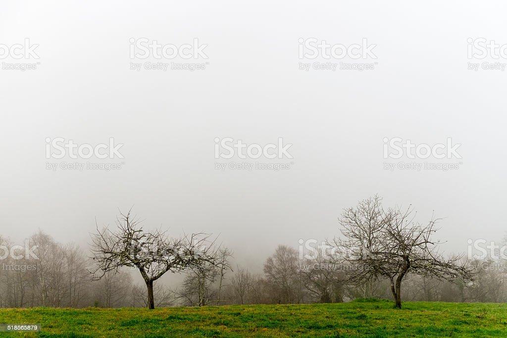 Asturias royalty-free stock photo