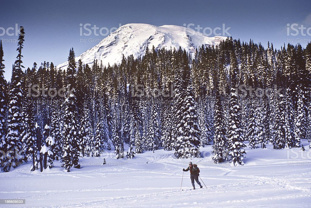 Cross Country Skiing at Mount Rainier royalty-free stock photo