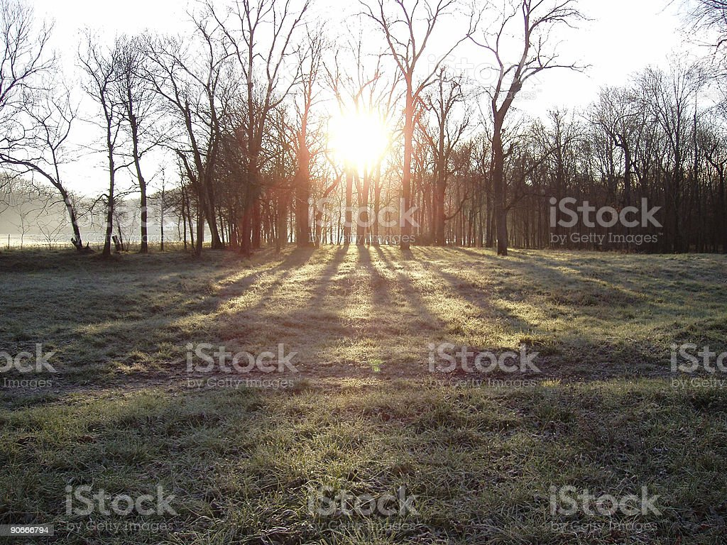 At Dawn's Early Light - Sunrise royalty-free stock photo