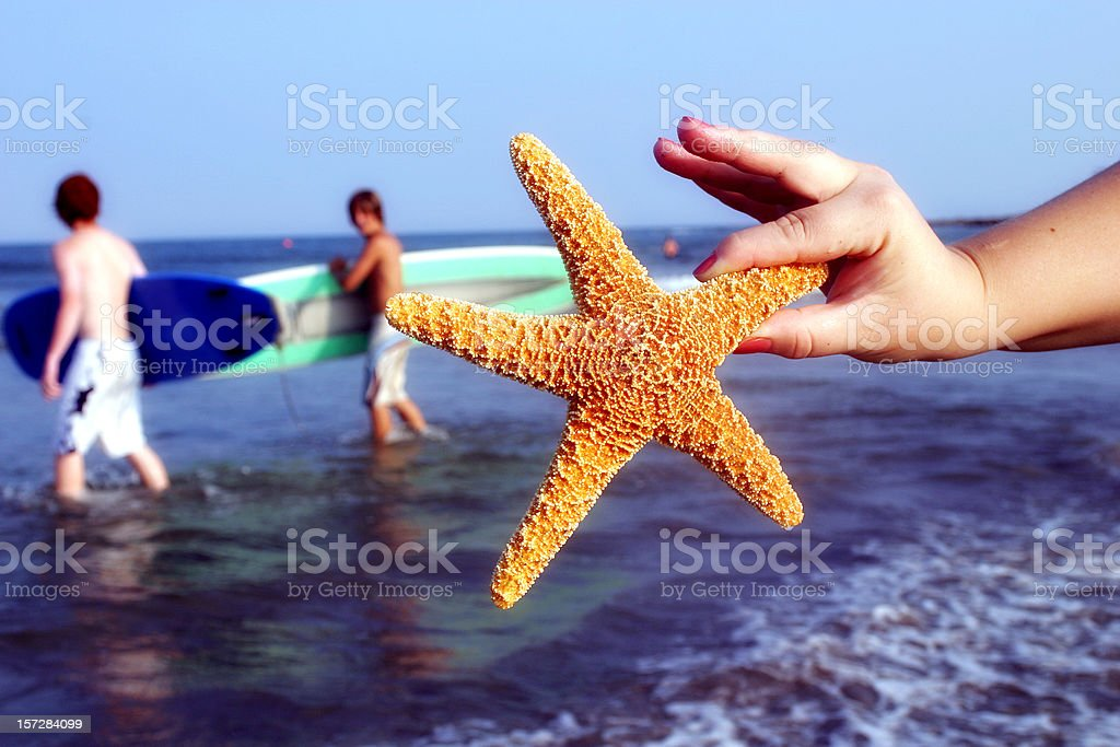 at the beach. royalty-free stock photo