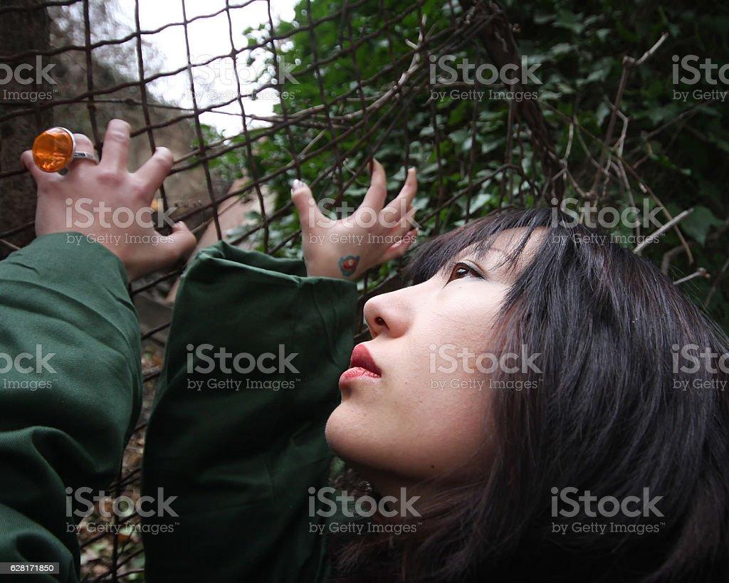 At the border stock photo