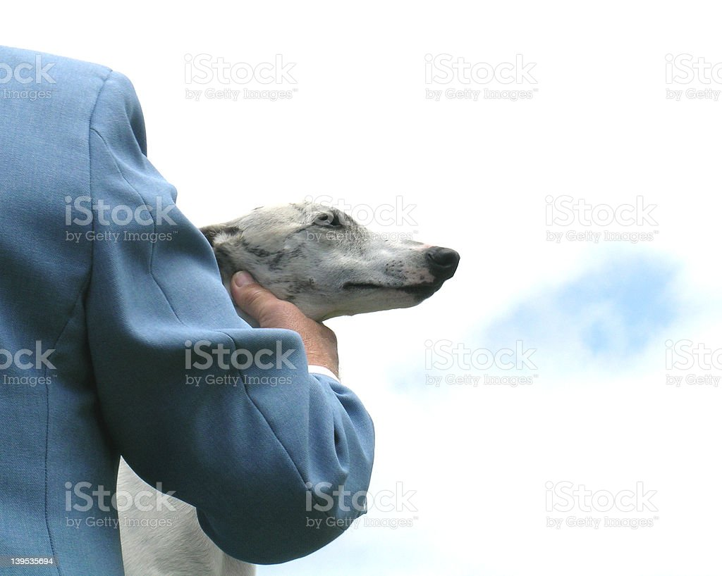 At the Dog Show royalty-free stock photo