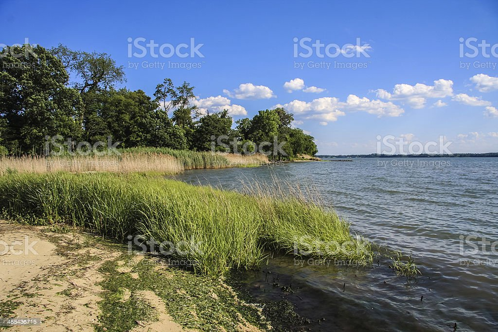 At the Edge of the Patuxent River stock photo