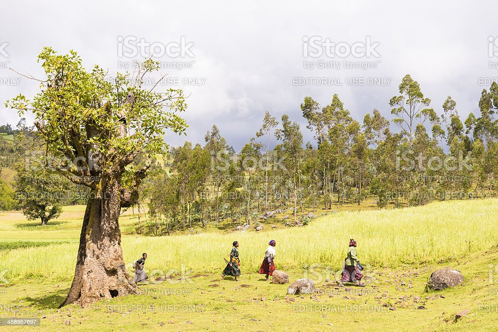 At the Jinka tribe stock photo