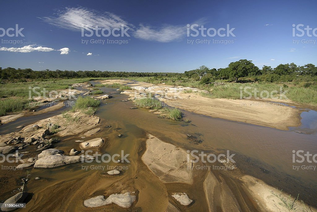 at the sabie river stock photo